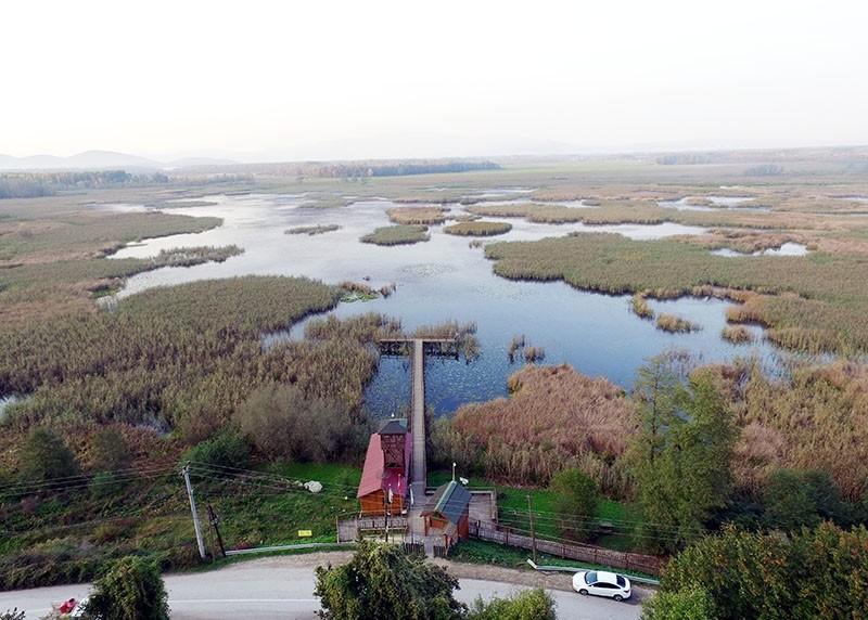 Bird paradise in northwest Turkey amazes visitors with scenery, wildlife