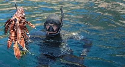 مسابقة لاصطياد سمكة التنين جنوبي تركيا