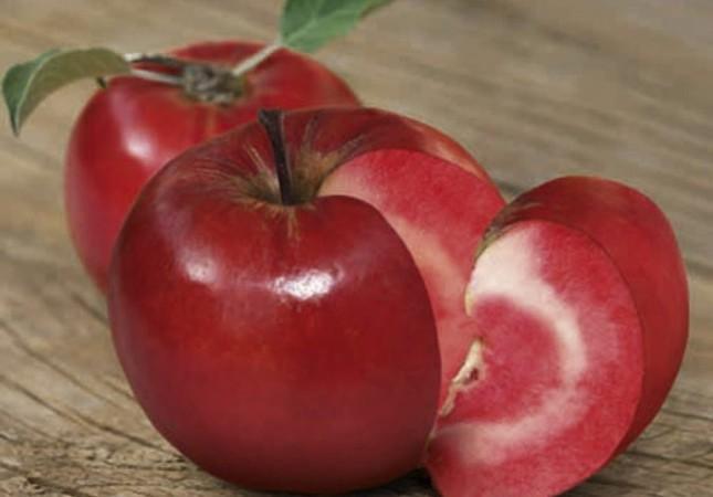 Turkey's indigenous Posof apple seeks global recognition