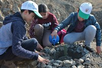 Turkish school children plant trees in nationwide campaign