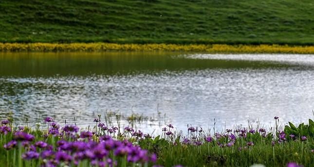 مصايف كوموش خانة الجبلية شمال تركيا تتأهب لاستقبال عشاق الطبيعة