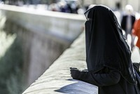 Denmark looks set to become the next European country to restrict the burqa and the niqab, worn by some Muslim women, after most parties in the Danish parliament backed some sort of ban on facial...