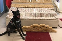 Police deal blow to drug traffickers in narcotics operations