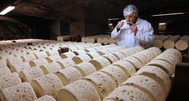 In this Jan. 21, 2009, file photo, Bernard Roques, a refiner of Societe company, smells a Roquefort cheese as it matures in a cellar in Roquefort, southwestern France. (AP Photo)