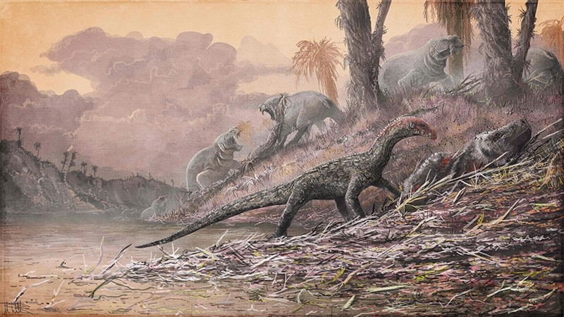 This handout picture released on April 13, 2017 by the Nature publishing group shows a life reconstruction of Teleocrater rhadinus feasting on a deep relative of mammals, Cynognathus. (AFP Photo)