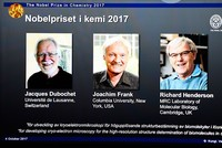 Scientists Jacques Dubochet, Joachim Frank and Richard Henderson were awarded the Nobel Chemistry Prize on Wednesday for cryo-electron microscopy, a simpler and better method for imaging tiny,...