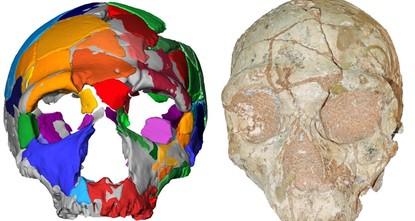 Les scientifiques découvrent les plus anciens restes humains modernes en dehors de l'Afrique