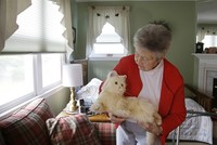 Scientists hope AI robo-cat will help seniors with daily tasks
