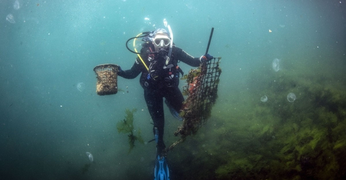 A diver picks up garbage at the bottom of the sea off the coast of Istanbul, Jun. 12, 2019. (AA Photo)