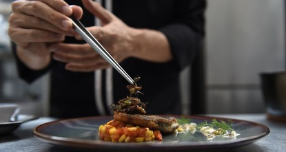 pAt a hip Bangkok diner, foodies with an adventurous palate tuck into a bug-based menu that includes watermelon salad sprinkled in bamboo worms, nachos with silkworm cherry tomato salsa and pasta...