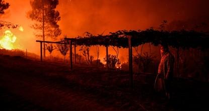 В Португалии бушуют сильнейшие лесные пожары