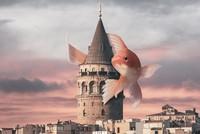 مدينة إسطنبول بعيون فنان تركي سريالي.. سحر على سحر