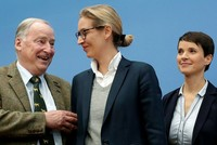 Despite the mainstream's view of the Alternative for Germany (AfD) as a hard-right or even a neo-Nazi party, its historic victory cannot be underestimated, as it is the first nationalist party to...