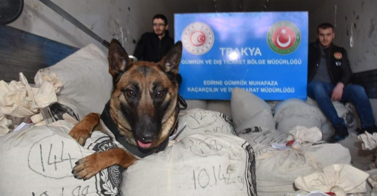 A sniffer dog and customs officers pose with the seized drugs, Edirne, Feb. 11, 2020. (DHA Photo)