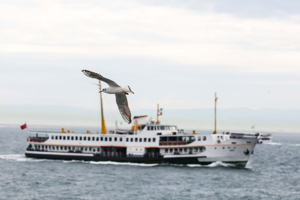 Accompanied by seagulls, ferries of Istanbul City Lines carry thousands of people from Asia to Europe and visa versa every day.