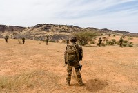 French envoys meet Malian gov't after mistakenly killing 11 soldiers