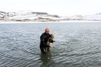 Turkish police diver saves dog from freezing in lake in eastern Van