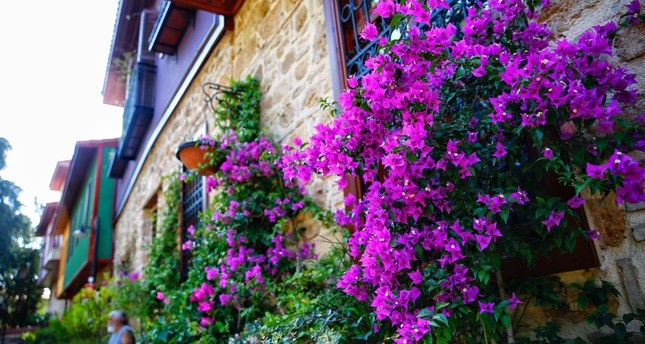 Antalya, city of flowers, blooms in international arena