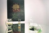 The Afterlife of Materialism: Julie Upmeyer at Operation Room