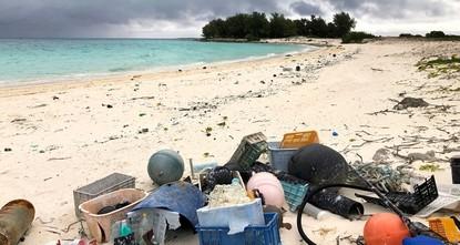 Plastic pollution ravages iconic Pacific bird sanctuary