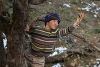 Three films debut in Turkish theaters this week