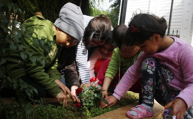 Children plant roses during their first outing in months.