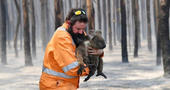 Adelaide wildlife rescuer Simon Adamczyk is seen with a koala rescued from a burning forest near Cape Borda on Kangaroo Island, southwest of Adelaide, Australia, Jan. 7, 2020. AAP Image via REUTERS