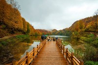 Located in Ordu in the country's northeast, Lake Ulugöl has a riot of color in fall. Due to its value in terms of natural resources, recreation and tourism, the Forestry and Water Affairs Ministry...