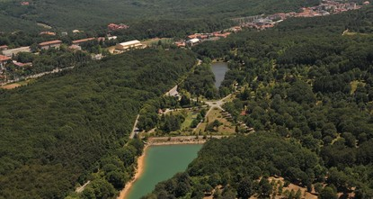 Istanbul's forests continue to grow, 2 million saplings at a time