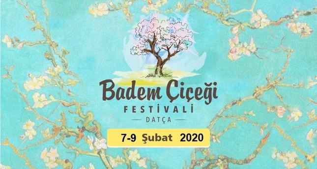 دعوة للاستمتاع بمهرجان أزهار اللوز السنوي في شبه جزيرة داتشا