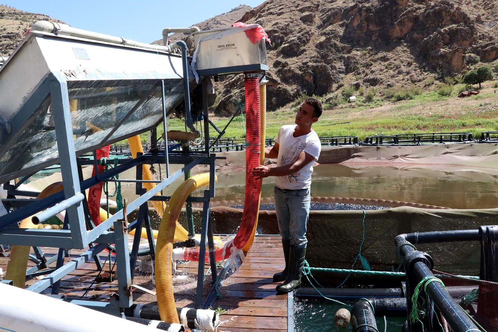 Рыбная ферма по выращиванию форели и лосося в турецком Элязыге