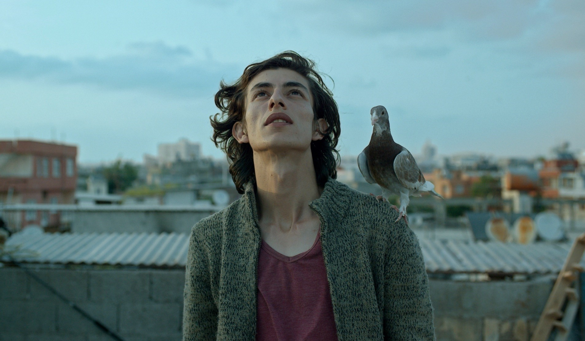 Banu Su0131vacu0131u2019s u201cGu00fcvercinu201d (The Pigeon) will be screened as part of the festivalu2019s Turkish Films section.