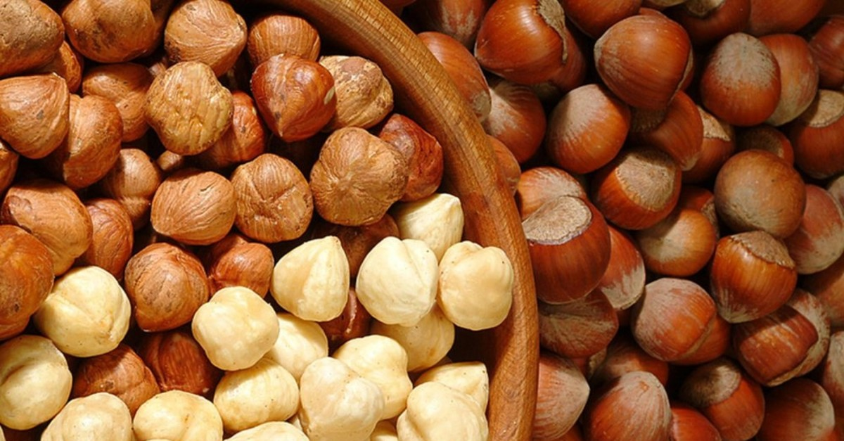 Turkey exported over 245,000 tons of hazelnuts in the first 10 months of the export season.