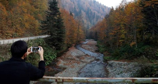 Witness nature's autumn transformation in Düzce's plateaus