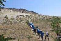 Turkey trains 800 foreign experts on anti-desertification