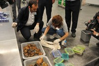 Turkish customs officials find 9 animal species inside luggage returned from Russia
