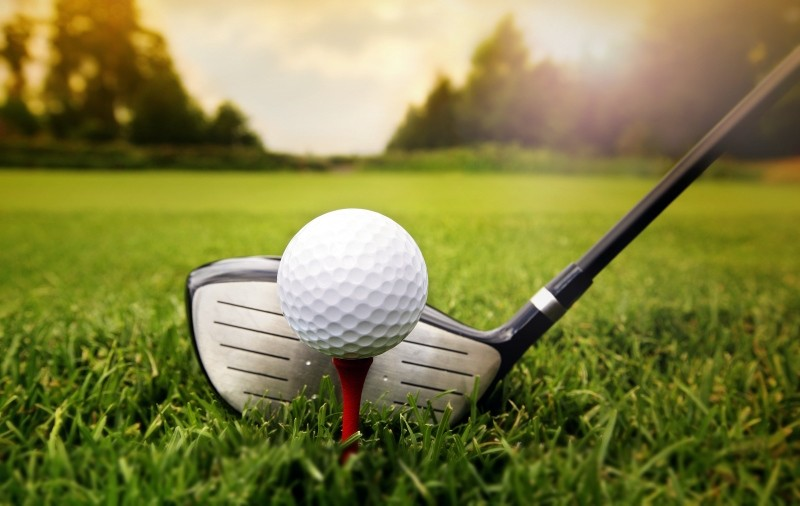 Golf club and ball in grass. (SHUTTERSTOCK/ FILE Photo)