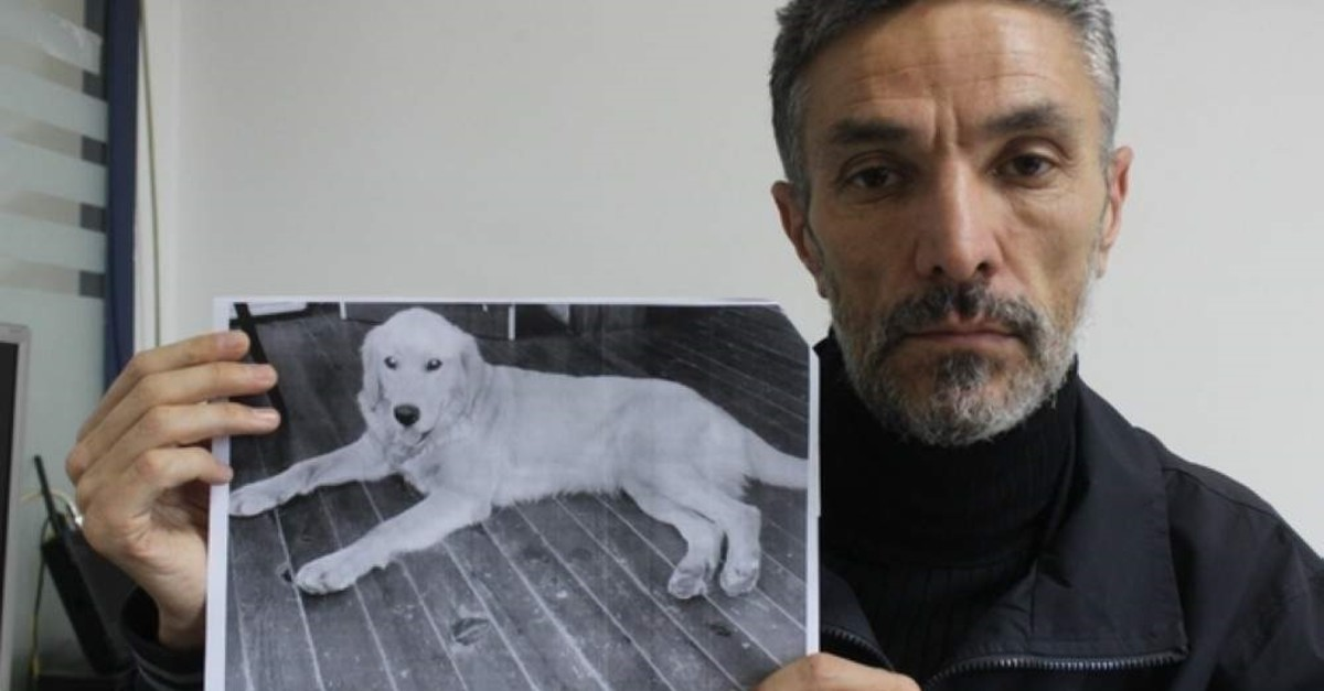 A Turkish man traced the proofs from Turkey to US to found his missing dog. (IHA Photo)