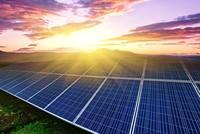 رئيس الوكالة الدولية للطاقة: لتركيا دور إقليمي كبير في تصدير الطاقة المتجددة
