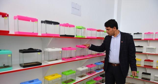 Ali Yılmaz breeds some 500 scorpions in the storage area he set up in his basement.