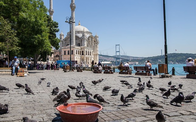 Pigeons gather near a bowl filled with water to cool off at Ortaköy Square, with Istanbul landmarks Grand Mecidiye Mosque and July 15 Martyrs Bridge (Bosporus Bridge) in the background, on June 30, 2017. (Photo: Sabah / Kübra Usta)
