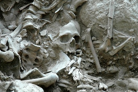 Human skeletons discovered at the excavation site in Gökçeada, northwestern Turkey (AA Photo)