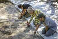 1,600-year-old mosaics unearthed again after 41 years