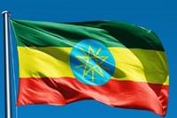 منظمة غولن الإرهابية تمارس اختلاسات وأنشطة غير قانونية في إثيوبيا