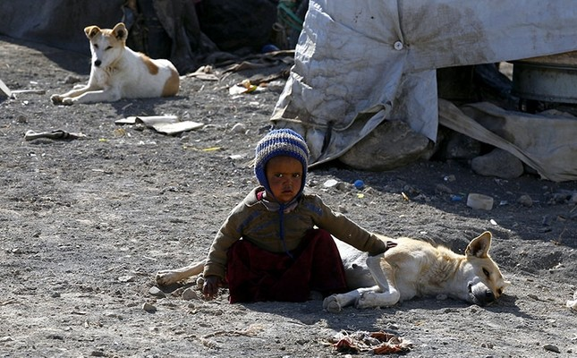 A displaced Yemeni child plays with a dog outside a makeshift shelter at a camp for Internally Displaced Persons (IDPs) in the northern province of Amran, Yemen, Jan. 10, 2018. (EPA Photo)