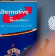 AfD disappointed over no Arabs in top 10 criminals
