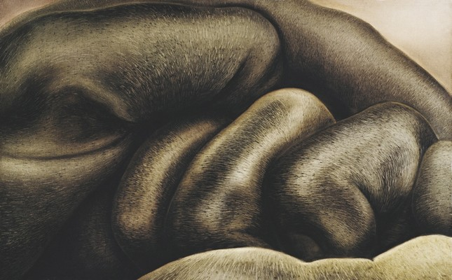 A work by Fatma Tülin, made in 1983, 125x90 cm, oil on canvas.