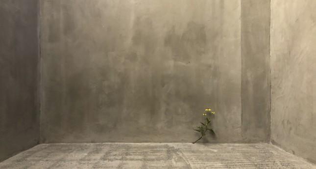 """""""Weed #443"""" (2018) by Tony Matelli."""