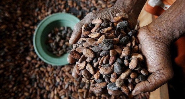 Coffee is under the threat of extinction due to climate change, among other foods.