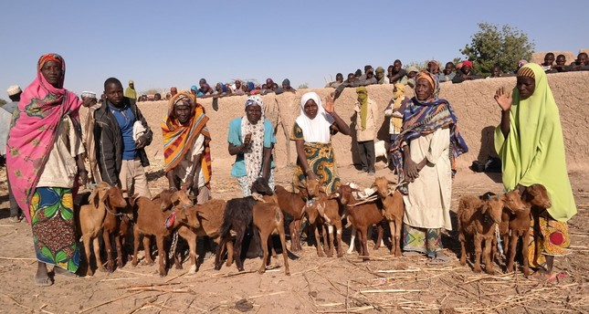 Goats are handed to women from impoverished families in Niger and Burkina Faso.